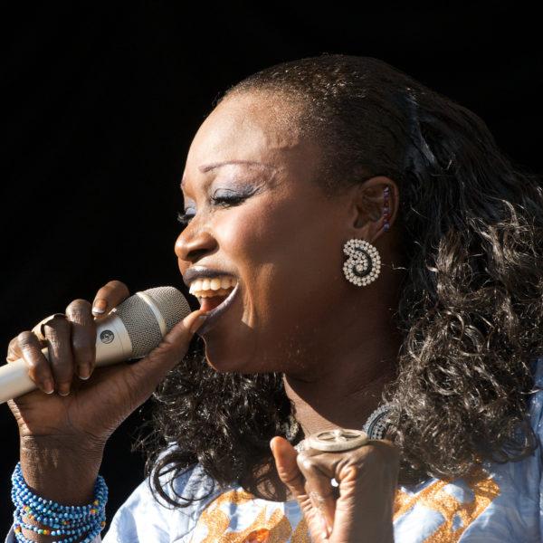Afropop Divas - Live
