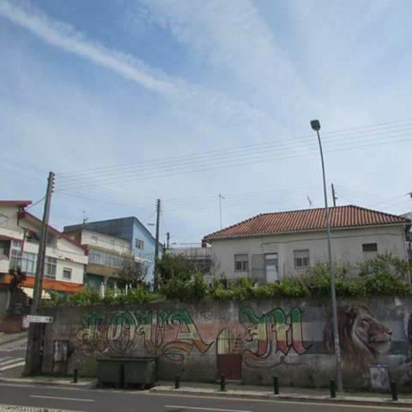Photo Essay: Cova Da Moura
