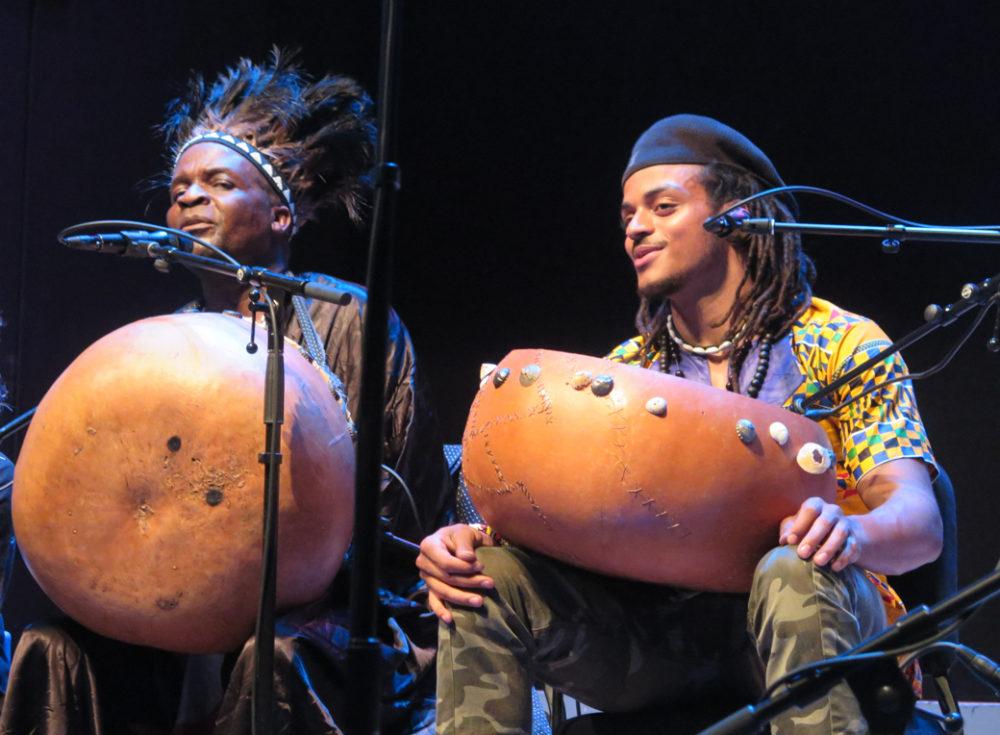 Chartwell Dutiro and Shorai Dutiro Robinson in Brooklyn (Eyre 2017)