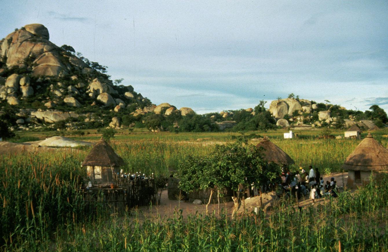 Eastern Zimbabwe landscape (Eyre 1993)