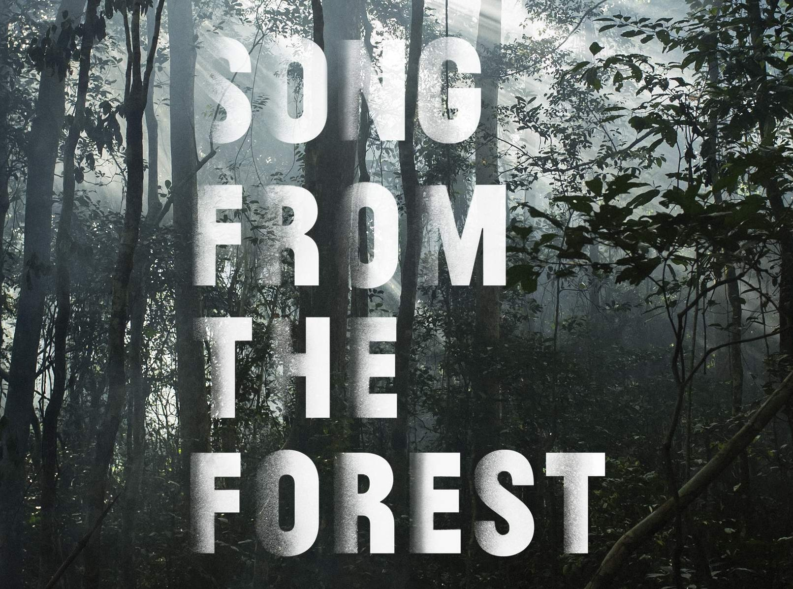Field Report: Song From the Forest at SXSW 2014