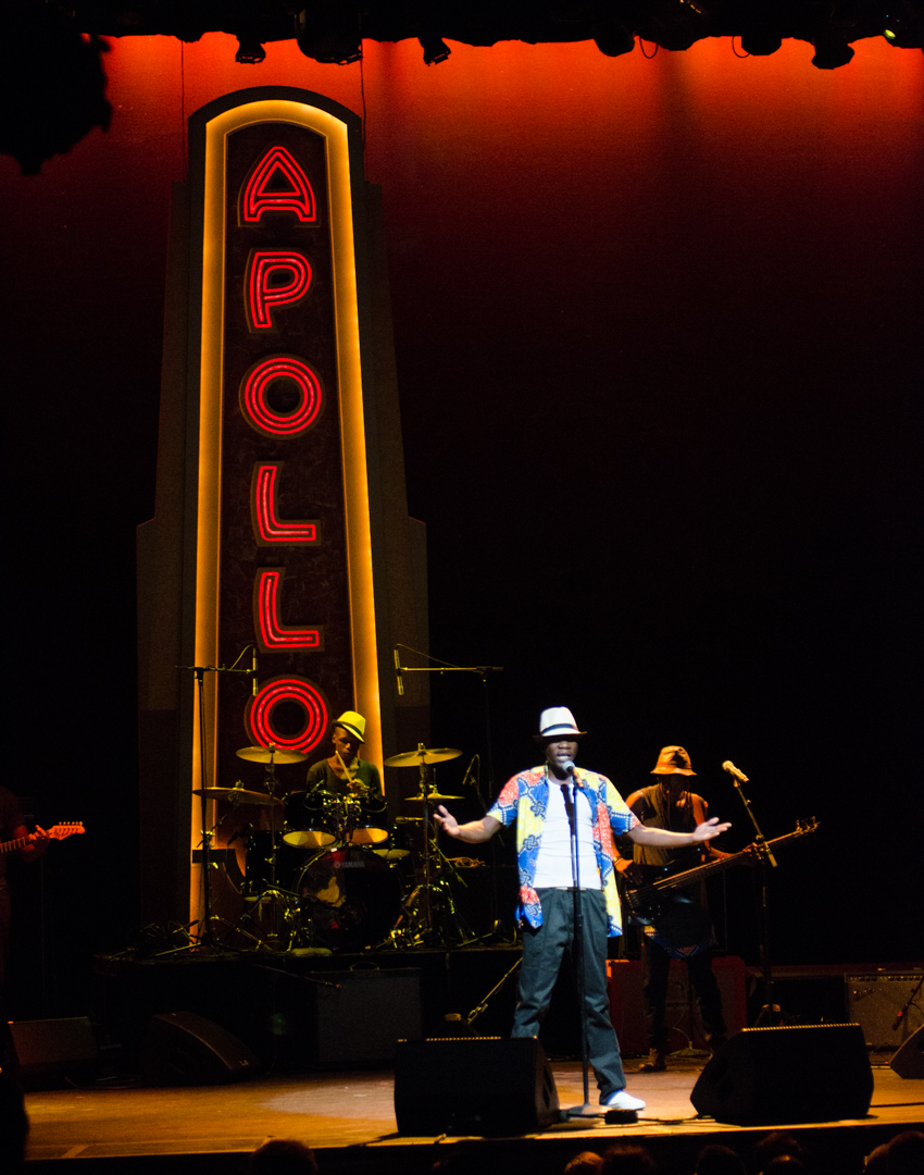 Africa Now! 2016 Rocks the Apollo Theater in Harlem: Video Feature
